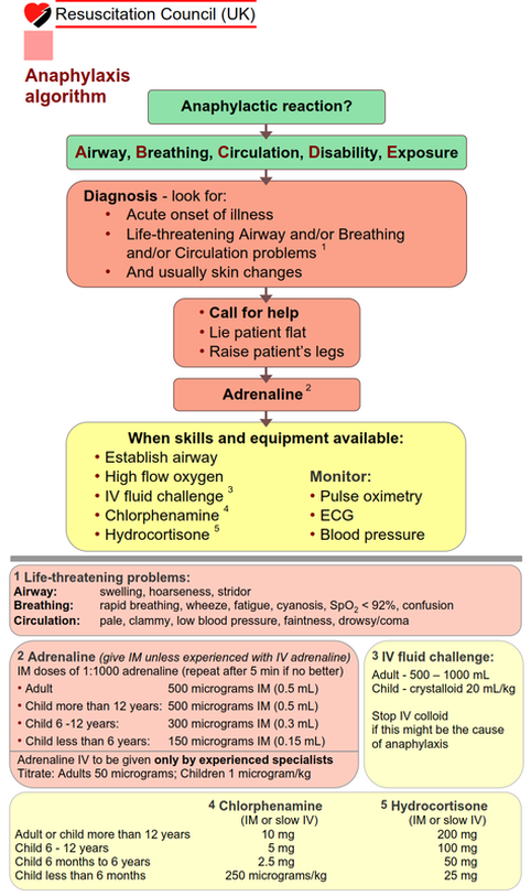 Algorithms - Global Anaesthesia and Critical care ...